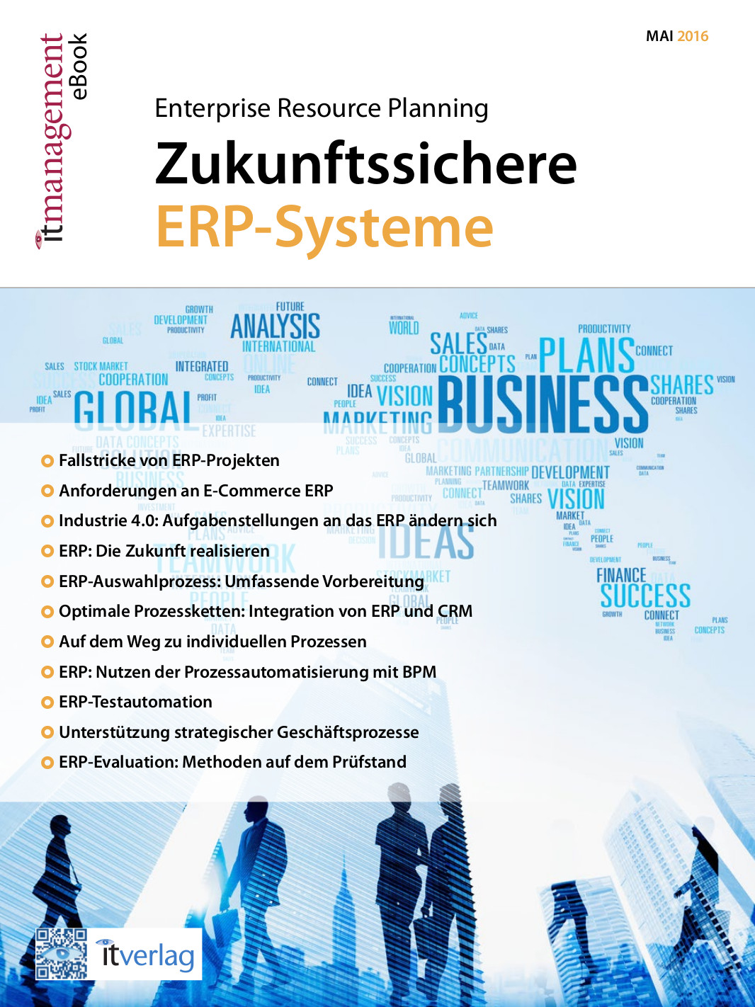 it-management e-book ERP-Systeme
